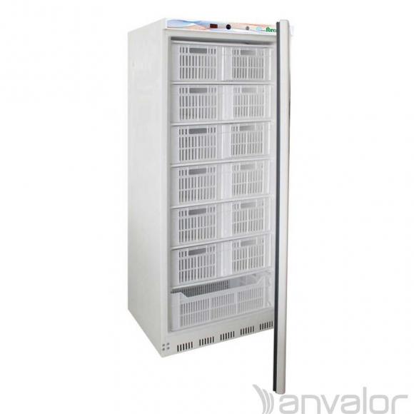Ipari Fagyasztószekrény EF600CAS
