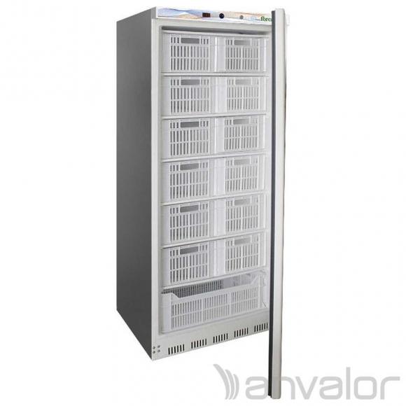 Ipari Fagyasztószekrény EF600SSCAS